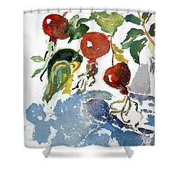 Abstract Vegetables 2 Shower Curtain