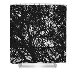 Shower Curtain featuring the mixed media Abstract X by Chriss Pagani
