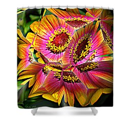 Abstract Yellow Flame Zinnia Shower Curtain by Kathy Kelly