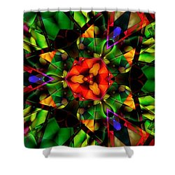 Abstraction Of Christmas Shower Curtain