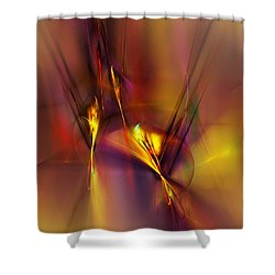 Abstracts Gold And Red 060512 Shower Curtain by David Lane