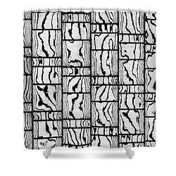 Abstritecture 18 Shower Curtain