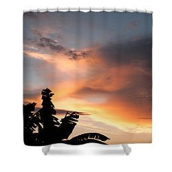 Abuja Sunset Shower Curtain by Hakon Soreide