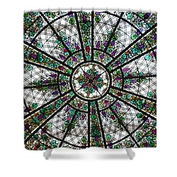 Abundancia Shower Curtain