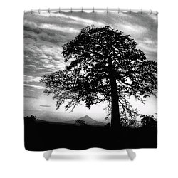 Acacia And Volcano Silhouetted Shower Curtain