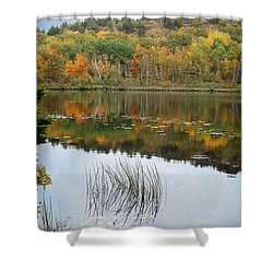 Acadia Autumn Shower Curtain