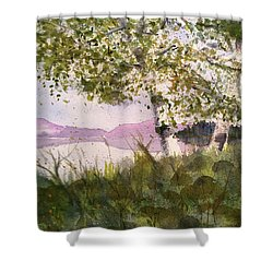 Acadia Morning Shower Curtain by Maura Satchell