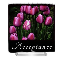 Shower Curtain featuring the photograph Acceptance by Mary Jo Allen