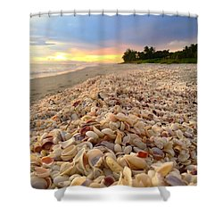 Access 7 Shower Curtain
