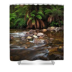 Acheron River Shower Curtain