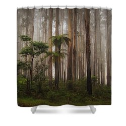 Acheron Way Shower Curtain