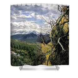 Acorn Creek Trail Shower Curtain
