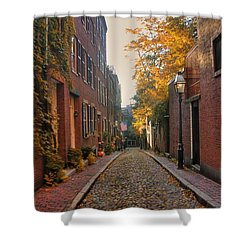 Acorn St. 3 Shower Curtain by Joann Vitali
