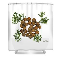 Shower Curtain featuring the digital art Acorns With Cedar by Lise Winne