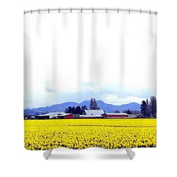 Acres Of Daffodils Shower Curtain by Will Borden