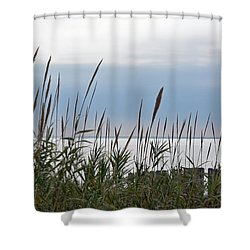 Shower Curtain featuring the photograph Across The Bay by Jimmie Bartlett