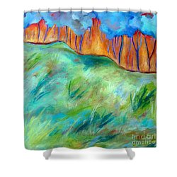 Across The Meadow Shower Curtain by Elizabeth Fontaine-Barr