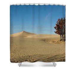 Shower Curtain featuring the photograph Across The Sand 2 by Tara Lynn
