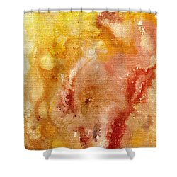 Shower Curtain featuring the painting Acrylic Abstract The Creation by Saribelle Rodriguez