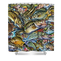 Action Fish Collage Shower Curtain
