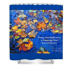 Shower Curtain featuring the photograph Adironack Laughing Water Charity by Diane E Berry