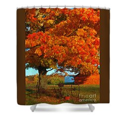 Shower Curtain featuring the painting Adirondack Autumn Color Brush by Diane E Berry