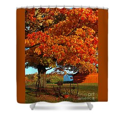 Shower Curtain featuring the photograph Adirondack Autumn Color by Diane E Berry