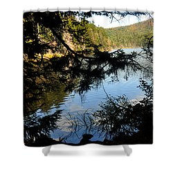 Adirondack Lake Shower Curtain by Diane Lent