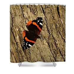 Shower Curtain featuring the photograph Admiral  Butterfly by J L Zarek