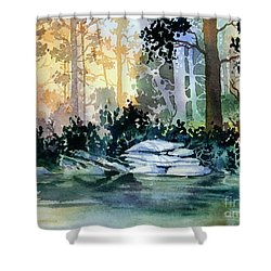 Admiralty Island Shower Curtain