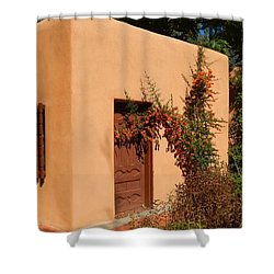 Shower Curtain featuring the digital art Adobe by Ann Johndro-Collins