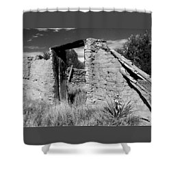 Adobe Wall And Door Shower Curtain
