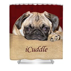 Adorable Icuddle Pug Puppy Shower Curtain by Patricia Barmatz