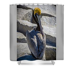 Adore Me Shower Curtain
