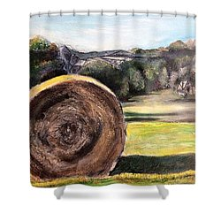 Adventures Await Shower Curtain