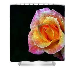 Aflame Shower Curtain by Doug Norkum