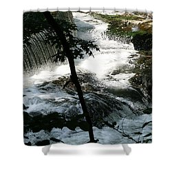 Shower Curtain featuring the photograph Africa 2 by Paul SEQUENCE Ferguson             sequence dot net