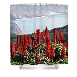African Aloe And False Bay Shower Curtain