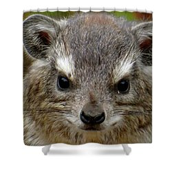 African Animals On Safari - A Child's View 6 Shower Curtain