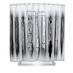 Shower Curtain featuring the photograph African Artefacts by Karen Lewis
