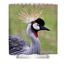 African Crowned Crane Shower Curtain