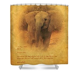 African Elephant Shower Curtain by John Wills