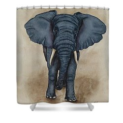 African Elephant Shower Curtain by Kelly Mills