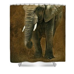 Shower Curtain featuring the photograph African Elephant With Textures by Clare VanderVeen