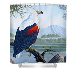 Shower Curtain featuring the painting African Fish Eagle by Anthony Mwangi