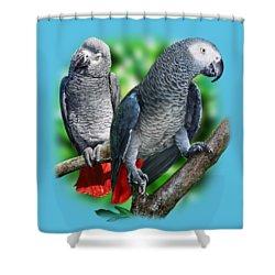 African Grey Parrots A Shower Curtain by Owen Bell