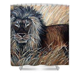African Lion 2 Shower Curtain