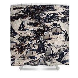 Shower Curtain featuring the digital art African Penguin 3 by Eva Kaufman