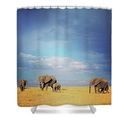 African Perfection Shower Curtain by Happy Home Artistry