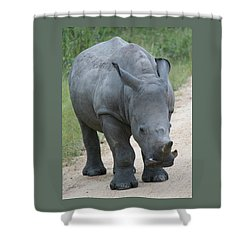 African Rhino Shower Curtain